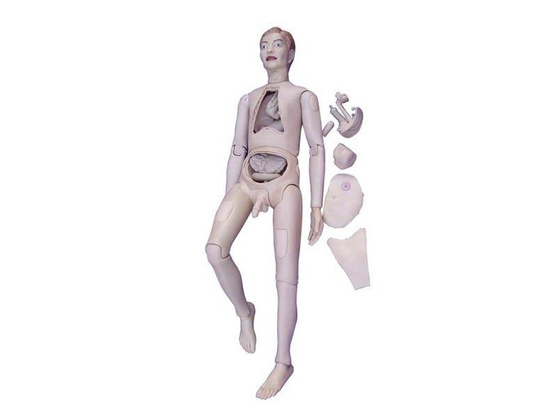 Modelo Femenino Para Practicas de Enfermería -Doll